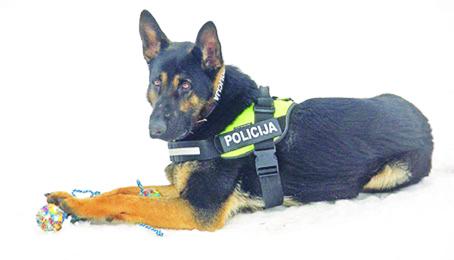 policija-suo