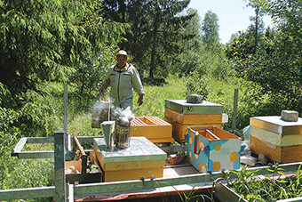 Bitininkystės ūkyje