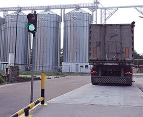 Žalias šviesoforo signalas pasako, kad pradedamas eilinės transporto priemonės su atvežtais grūdais svėrimas