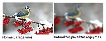 katarakta4-1